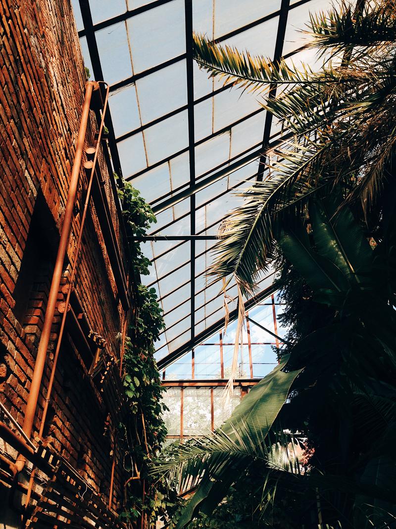 теплица ботанического сада пермь