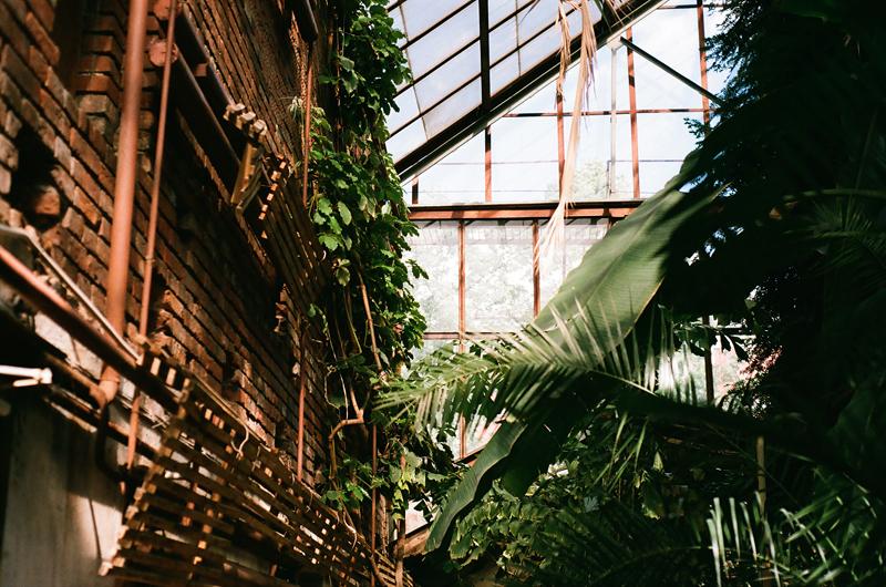 ботанический сад пгу