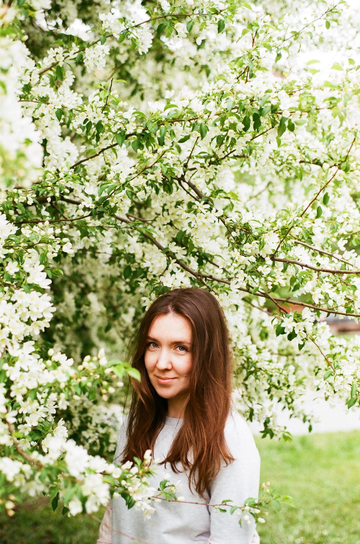 Цветущие яблони в Перми